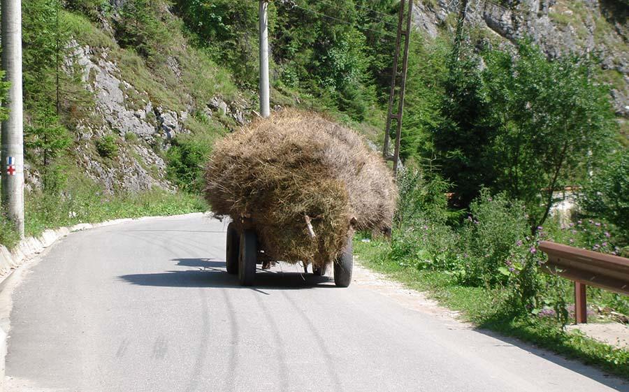 Road Trip România